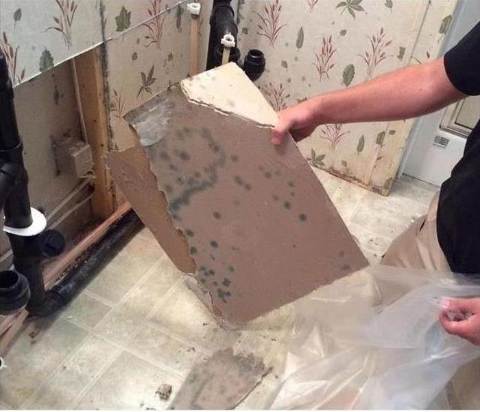 Mold Remediation before...