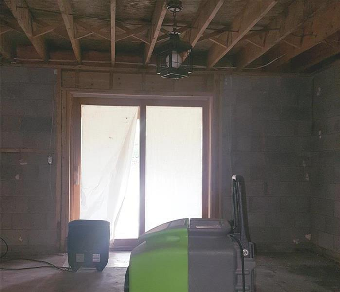 Mold Removal in Stanwood, MI After