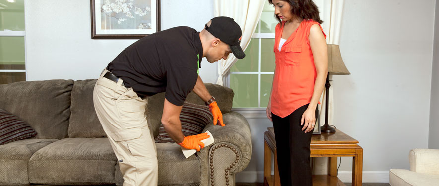 Northeast Grand Rapids, MI carpet upholstery cleaning